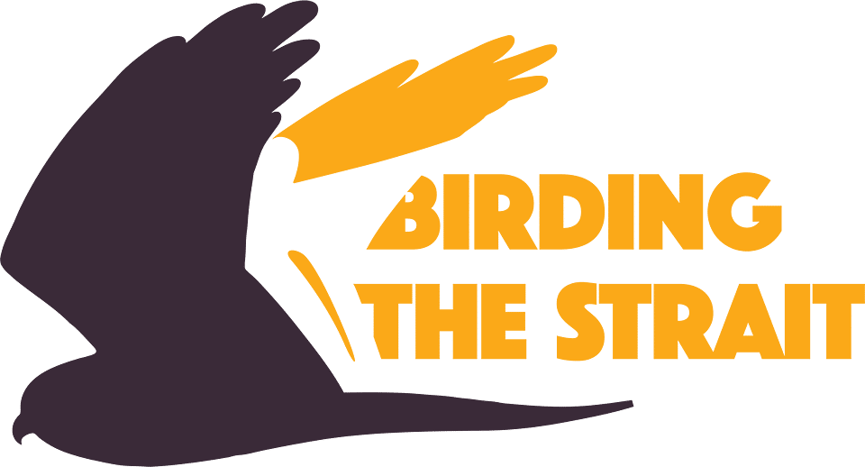 Birding The Strait Logo