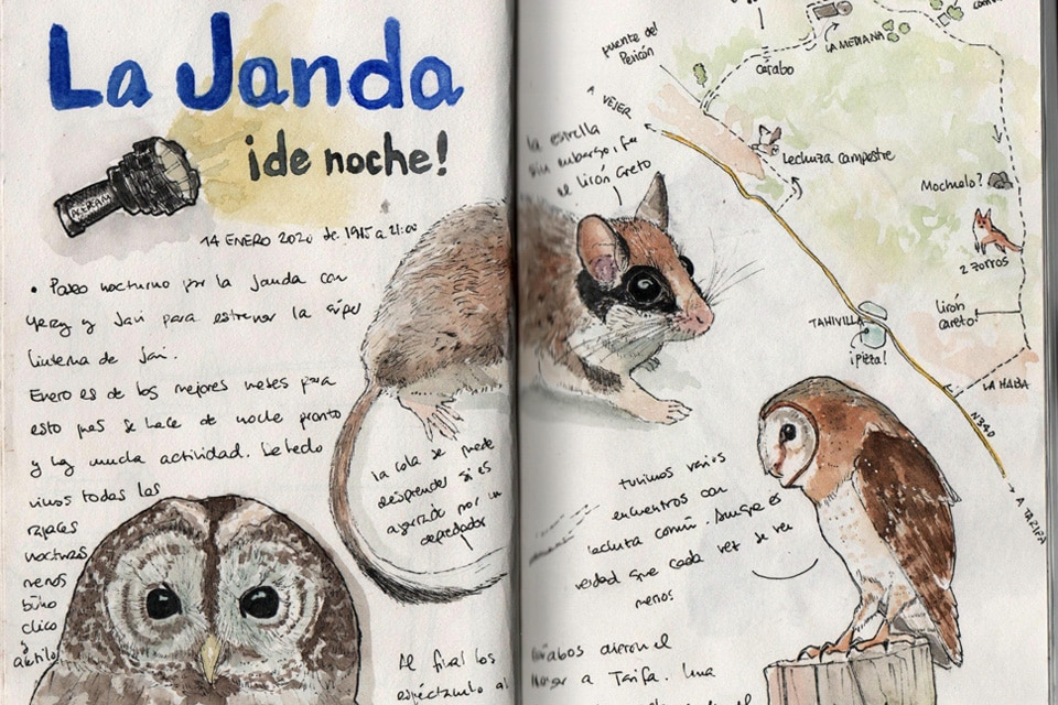 An example of Nature Journal, with which we will be experimenting during this trip. Illustration by Rafa Benjumea.